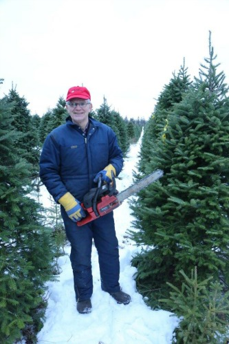 Christmas tree grower David Smith stands in a field of trees holding a chain saw.
