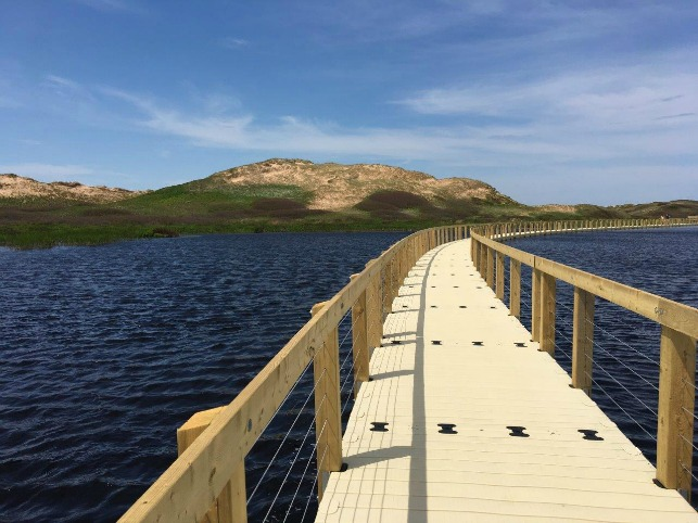 This is a photo of the floating boardwalk at Greenwich National Park in PEI