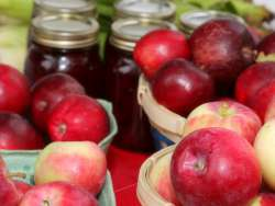 Pints of PEI apples with jars of preserves in background