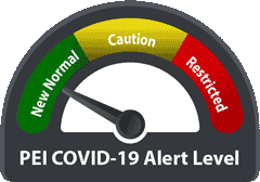 graphic showing the COVID19 alert levels