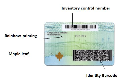New photo ID card with security features labelled as follows: inventory control number; identity barcode; Maple leaf and rainbow printing