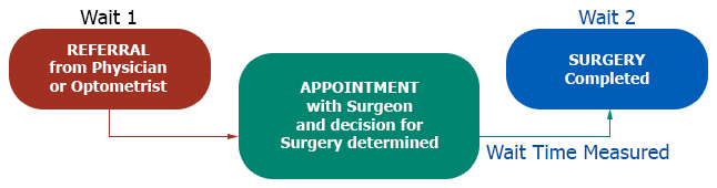 This chart displays the wait time measured as being from the time of appointment with a surgeon and decision for surgery has been determined until the time surgery is completed.
