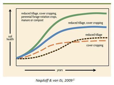 A line graph that illustrates the positive impact of soil conversation methods over time. At the low end is cover cropping alone, followed by reduced tillage, reduced tillage & cover cropping, and at the high end is reduced tillage, cover cropping, perennial forage rotation crops, manure and compost.