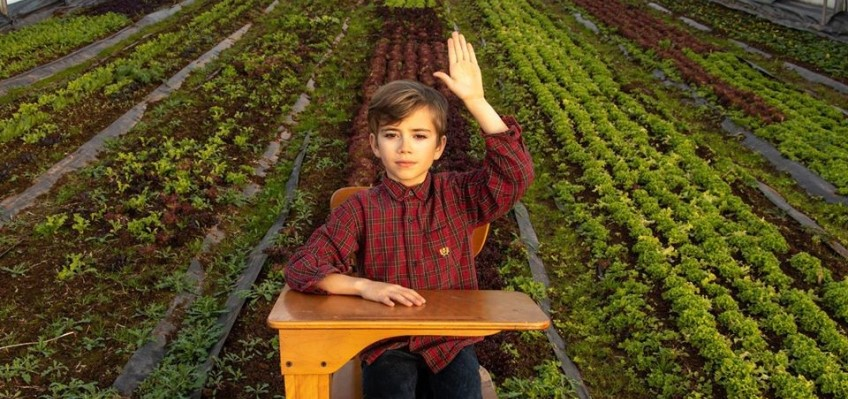 Image of student sitting at a desk in a local greenhouse
