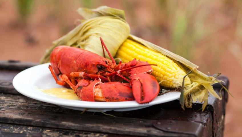 A plate of cooked lobster and corn on the cob