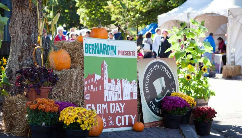 Farm Day in the City display with pumpkins, mums and bales of hay with tents and people in background