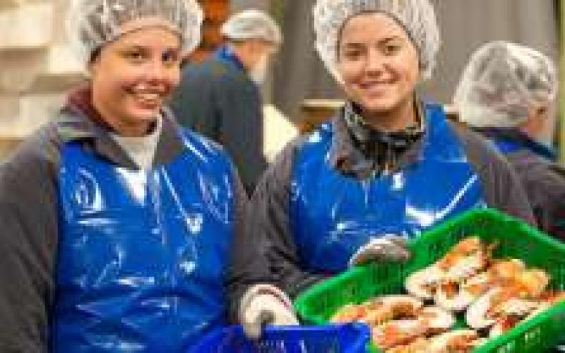 Two female students working in a lobster processing plant for the summer in PEI