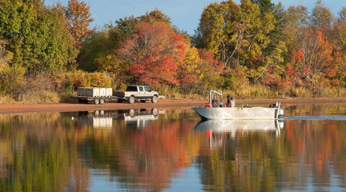 Small mussel harvesting dory with autumn foliage reflecting on river