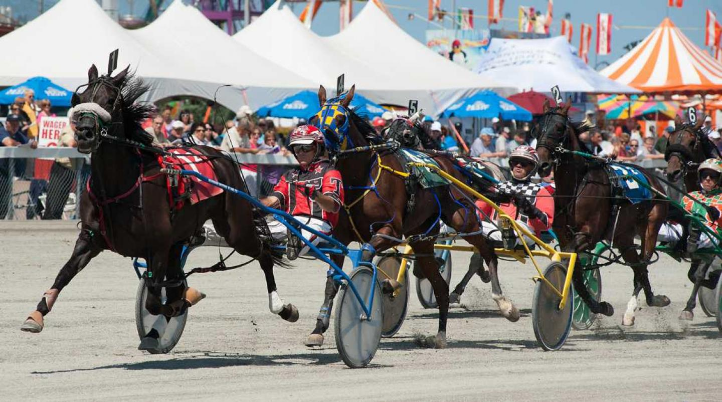 Harness race at Old Home Week