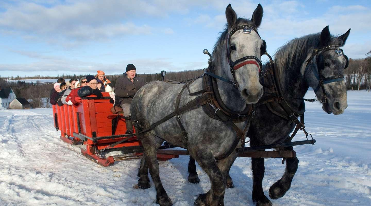 Image of horses in foreground pulling wagon over snow-covered hills