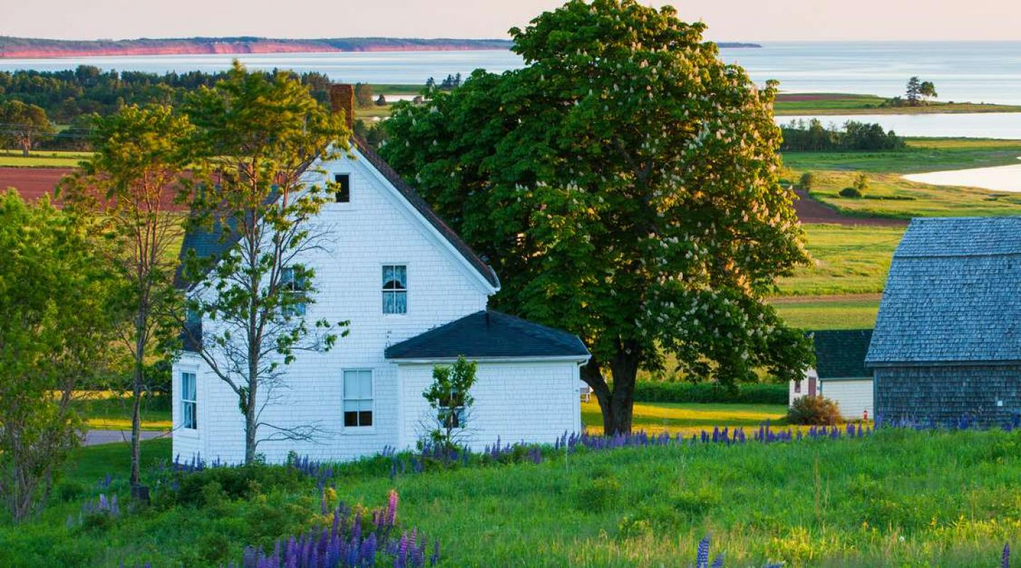 Beaty shot of rural home along PEI coastline