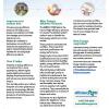 Thumbnail image of a business energy rebates application
