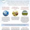 Thumbnail image of energy and environment budget fact sheet