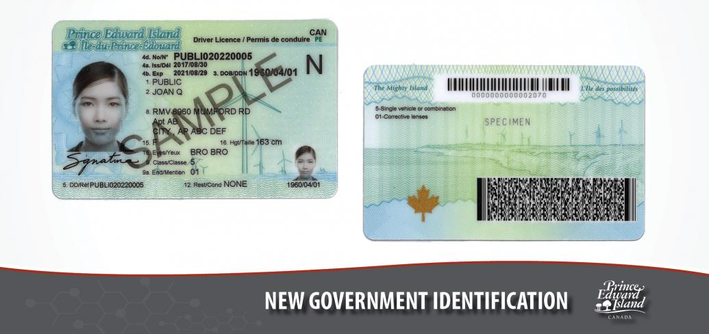 Photos shows the new driver's licence design