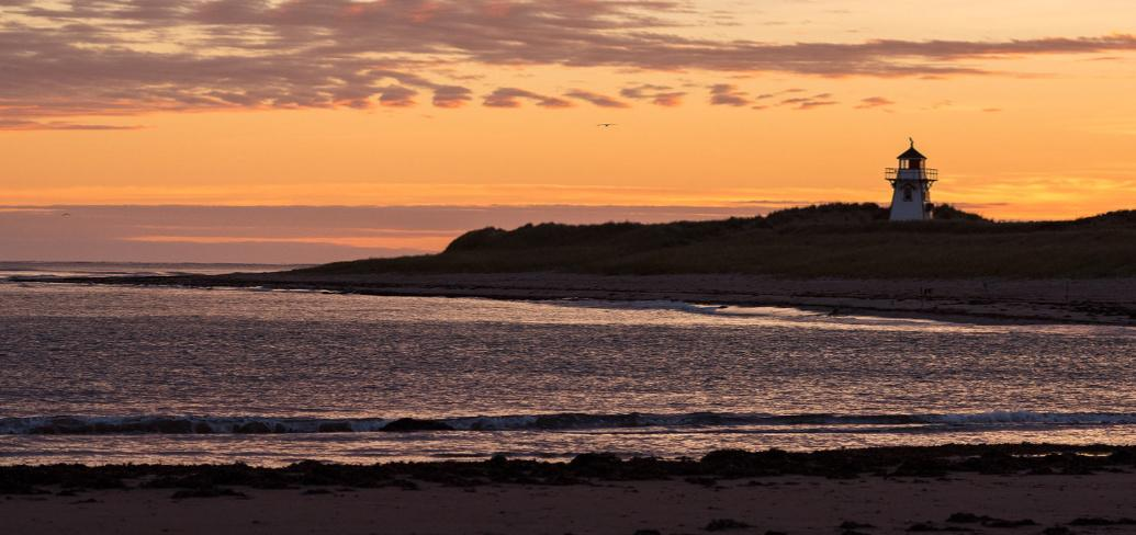 Sunset beach scene