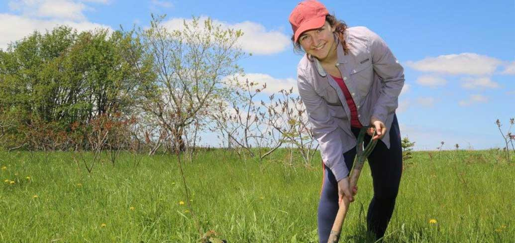 Katie Zember is shown here planting a tree as part of her summer job with a local environment group.