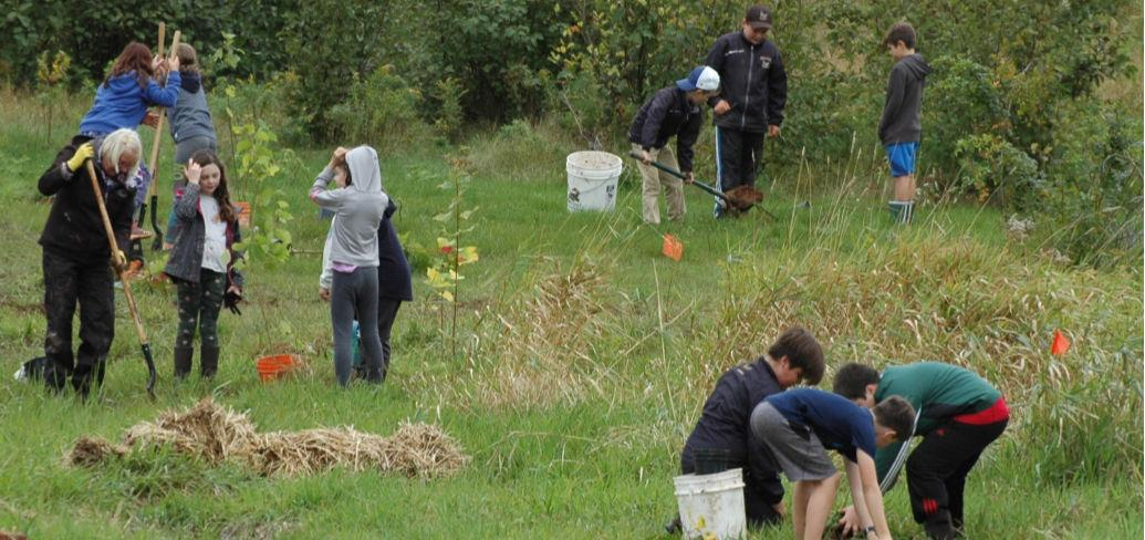 A group of students are bent over planting trees in a field