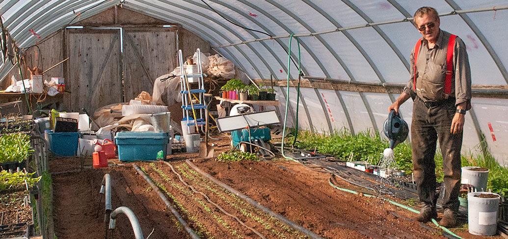 Sandy MacKay waters plants in his greenhouse