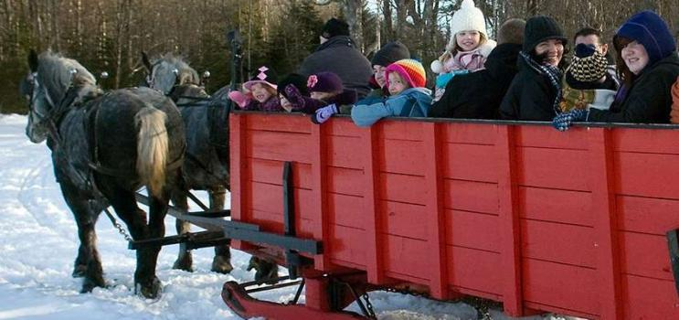 Winter scene of a group ready for a horse and sleigh ride