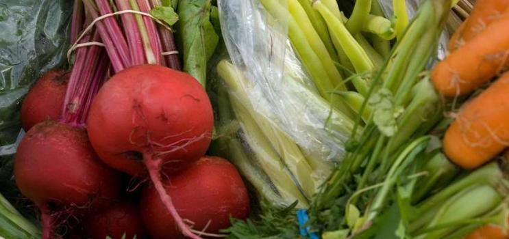 Local fresh vegetables