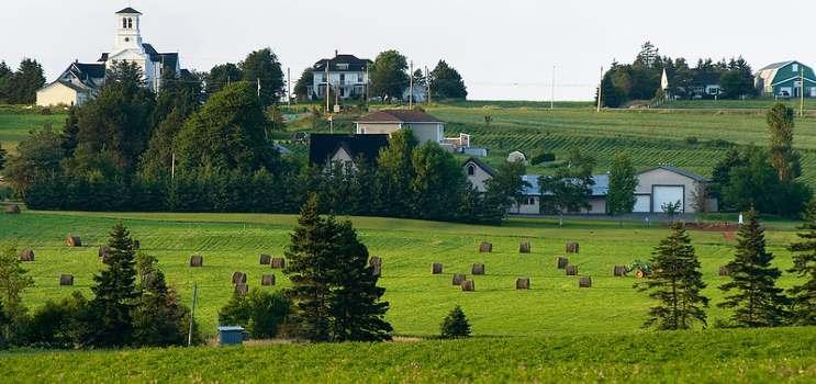 farmers field and houses