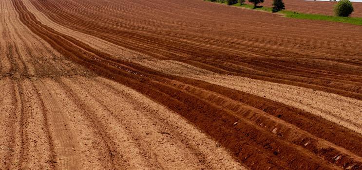 Photo d'un champ labouré au sol rouge