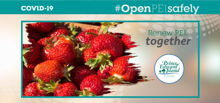 Graphic for upick guidance with image of fresh strawberries