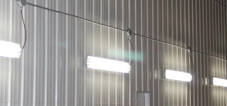 Lighting in a commercial agriculture facility