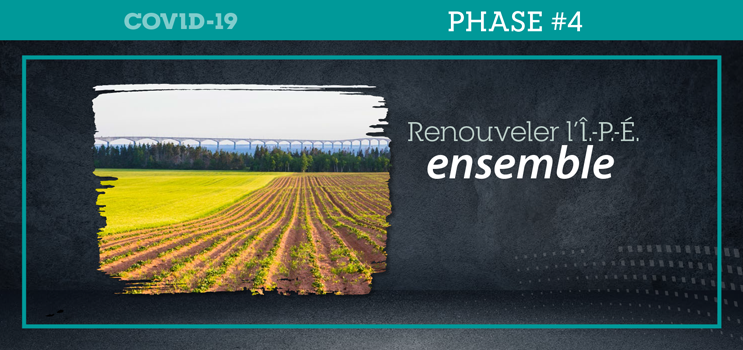 """Graphic image of field with Confederation Bridge in background with texte : """"Renouveler l'Î.-P.-É. ensemble"""""""