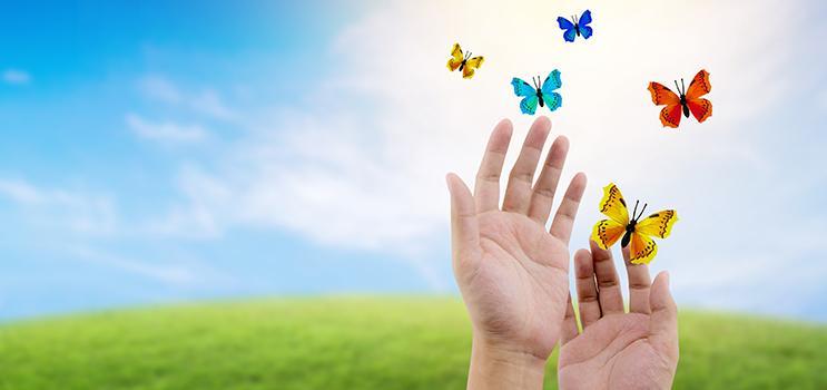Image de papillons libérés en volant  d'une paire de mains au ciel