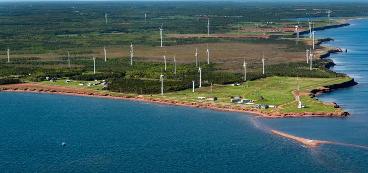 The North Cape Wind Farm has 16 turbines that are capable of generating 10.56 MWs.