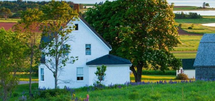 White farm house in scenic PEI community