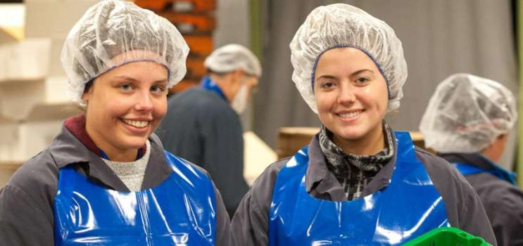 Two summer students working at Royal Star Seafood in Tignish, PEI.
