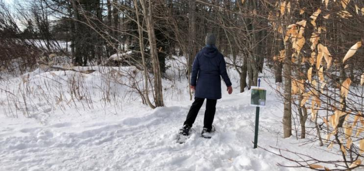 Snowshoeing on community trail