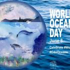 """Graphic image of the world with ocean species illustrated. Text reads """"World Oceans Day"""" June 8. Celebrate #worldoceansday #CdnOceans and Canada 150 logo"""