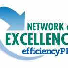 Network of Excellence logo