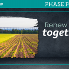 "Graphic with image of field in foreground and Confederation Bridge in background with text: ""Renew PEI together - Phase Four"""