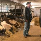 Photo shows two men talking in a dairy barn