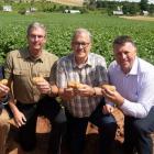 Four men side by side holding potatoes in a potato field