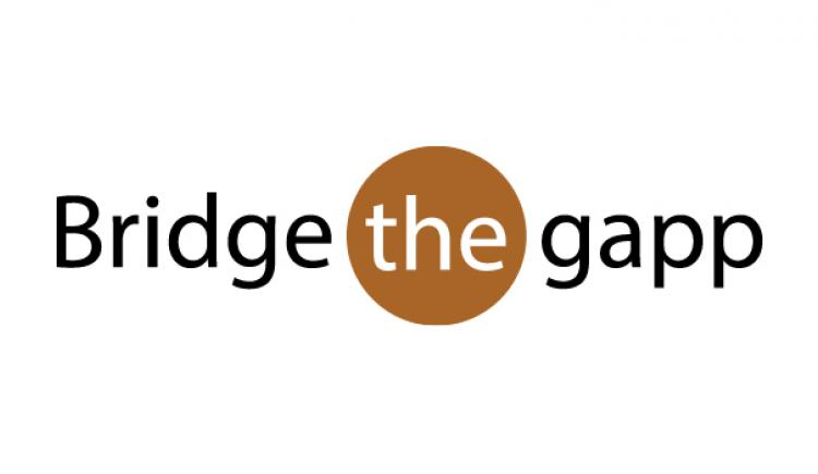 Bridge the gapp
