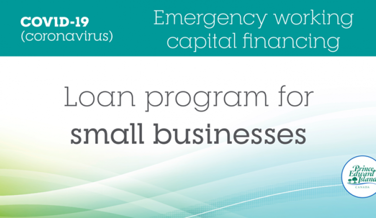 "Image that shows the text ""COVID-19 Emergency working capital financing - Loan program for small businesses"