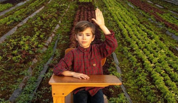 Image d'un enfant assis sur un bureau d'école dans une serre