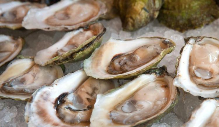 Malpeque oysters on ice