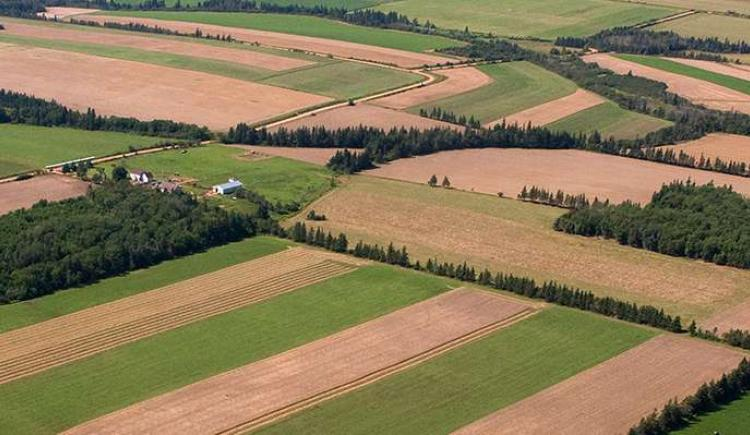 Aerial of Prince Edward Island farm with strip crops, hedgerows and forested land