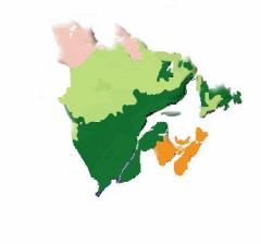 A map on PEI, nova Scotia and New Brunswick showing the range of the Acadian Forest Region