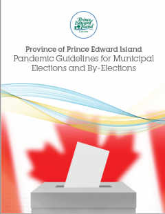 Pandemic guidelines for municipal elections and by-elections cover