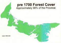 A map showing that forests covered nearly 100% of PEI in 1700