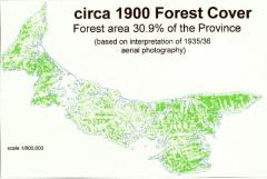 A map of PEI forest cover in 1900