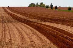 Farm field with red soil